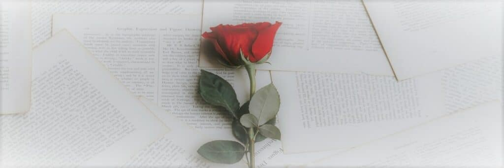 Love God - red rose with Bible