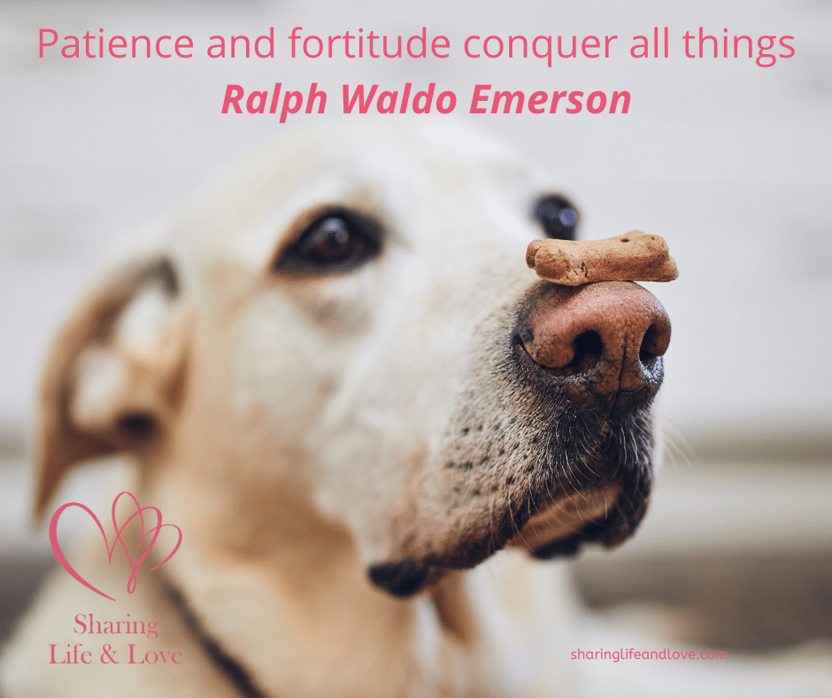 patience and understanding ralph emerson quote