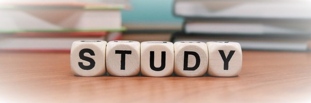 why study the bible the importance of bible study the words study